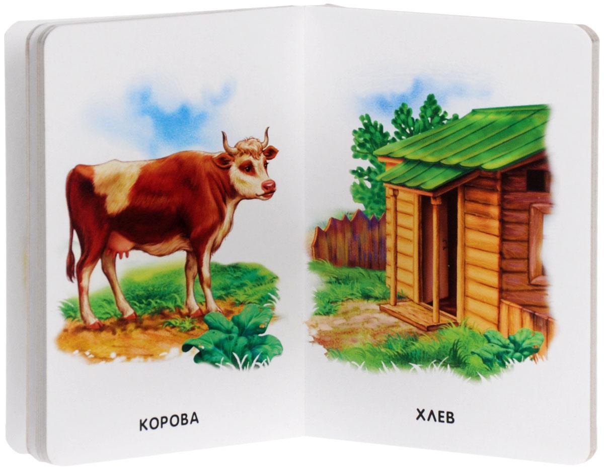 Домашние животные и их дома картинки для детей